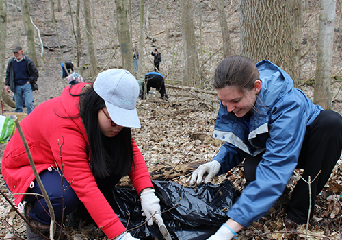 Students cleaning the forest
